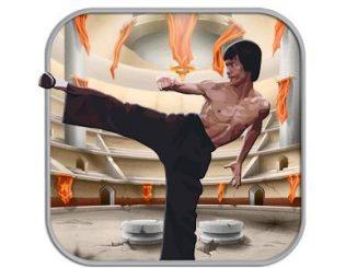 تحميل لعبة قتال جاكي شان