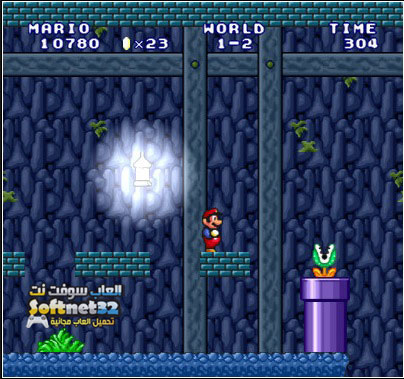 download pc Mario Forever Flash