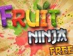 تحميل لعبة تقطيع الفواكه فروت نينجا Fruit Ninja