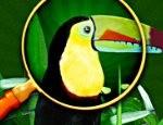 لعبة الهروب من الجزيرة Escape from Rio de Janeiro تحميل العاب الهروب مجانا للكمبيوتر .. لكل محبي العاب الذكاء والمغامرة والعاب الهروب نقدم لكم لعبة الهروب من الجزيرة Escape from Rio de Janeiro للتحميل برابط مباشر مجانا على العاب سوفت […]