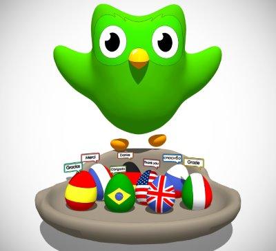 تحميل برنامج دولينجو Duolingo لتعلم الانجليزية