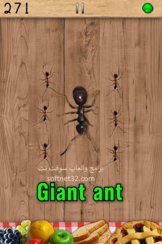 لعبة النمل والنحل
